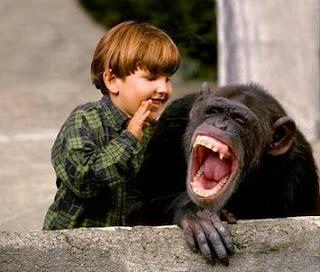 mono reir chiste nino vivir mejor