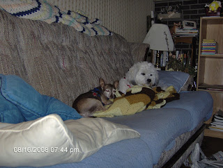 Jake and Nisie on the Couch