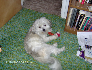Nisie and Her Red Toy