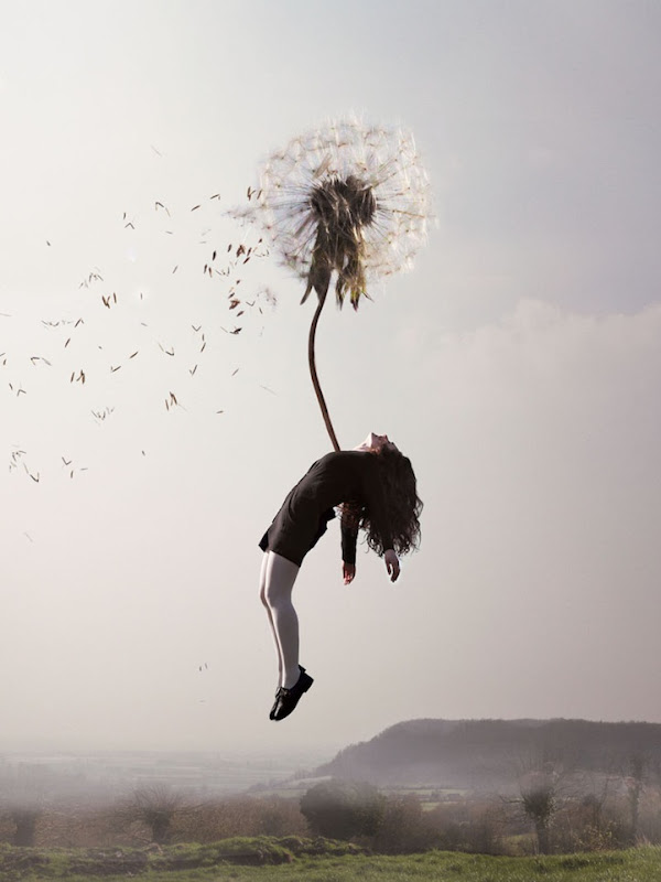 Floating Away Photos - Photography By Maia Flore 6