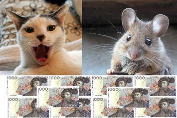 Katten, musen, 10 000!