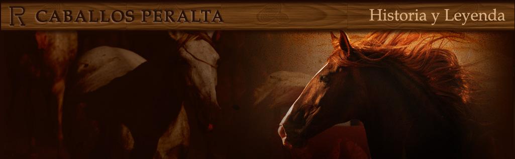 Peralta-Caballos PRE venta-Yeguada Pura Raza Español y CDE-Spanish horses-Elevage-Chevaux-Peralta