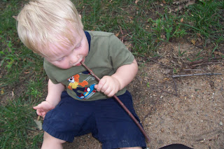 toddler with a twig in his mouth