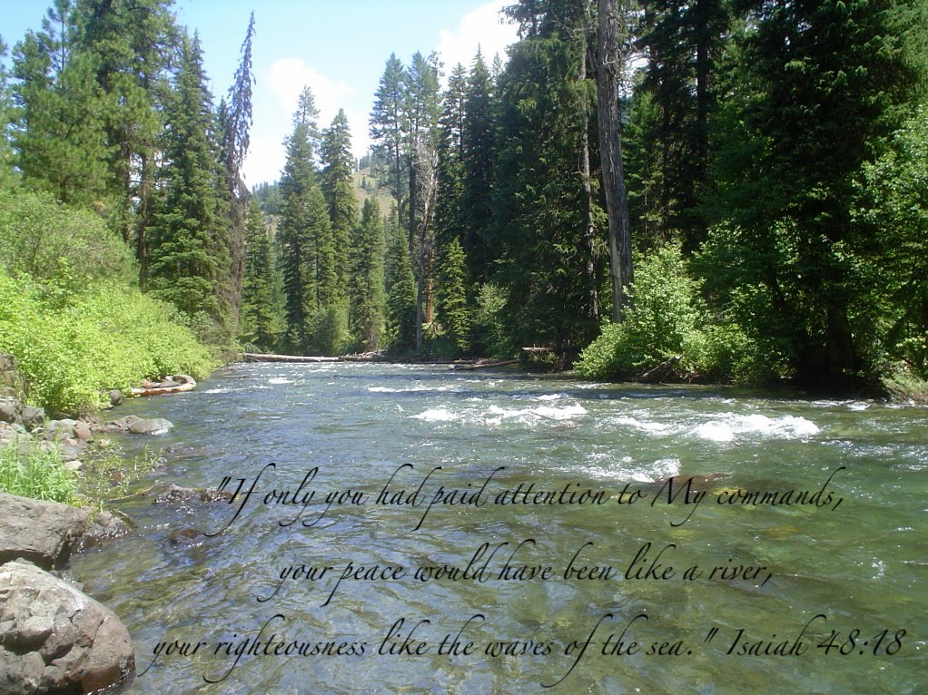 peace like river Discover and share peace like a river quotes explore our collection of motivational and famous quotes by authors you know and love.