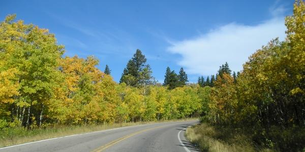 [P1010282-autumn-east-glacier-national-park.JPG]