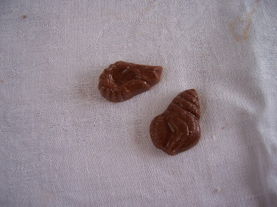 Chocolat de Pâques : coquillages