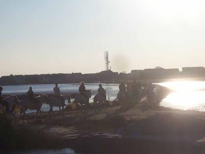 Ballade à cheval en Camargue aux Saintes Maries de la mer au coucher du soleil