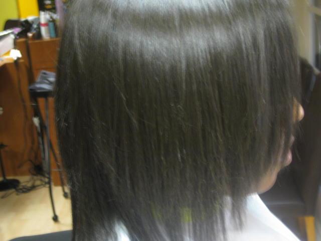 Brazilian Blowout Hair Dryer 74