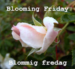 Each Friday is a Blooming Friday