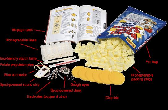 potato chips experiment essay