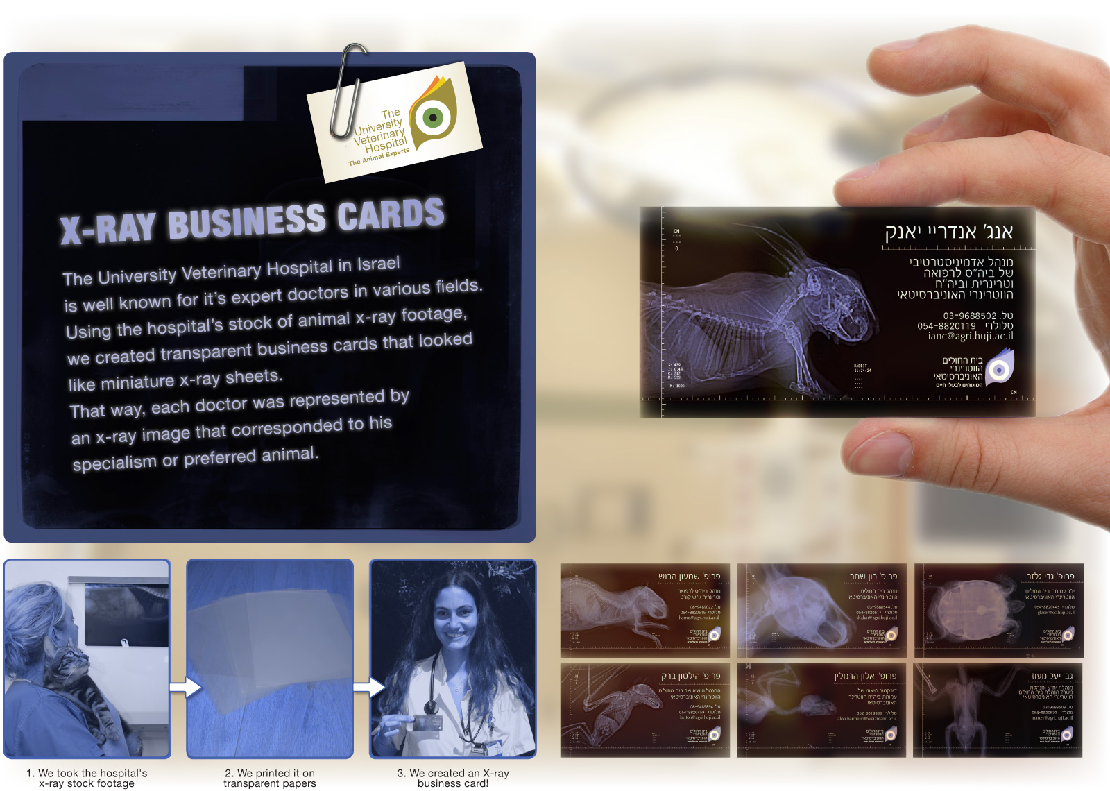 Super Punch: X-Ray Business Cards