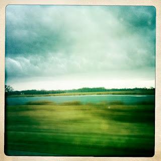 Downstate Illinois field
