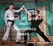 Master of Karate & Friendship Award