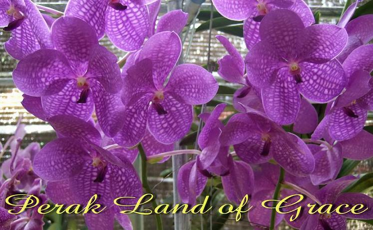 Perak Land of Grace