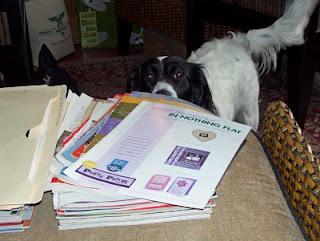 Bella peeks into what I am doing.