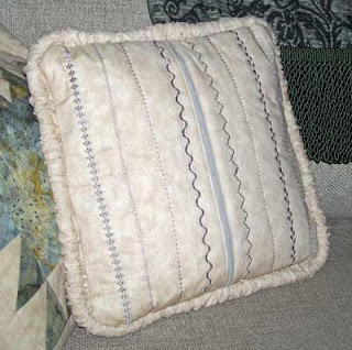 Home Dec Pillow #2 back view with zipper