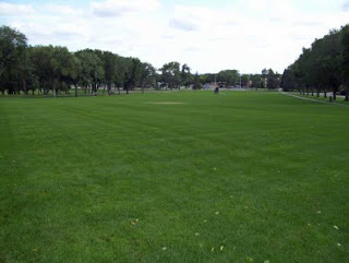 An expansive view of the Capiol Lawn