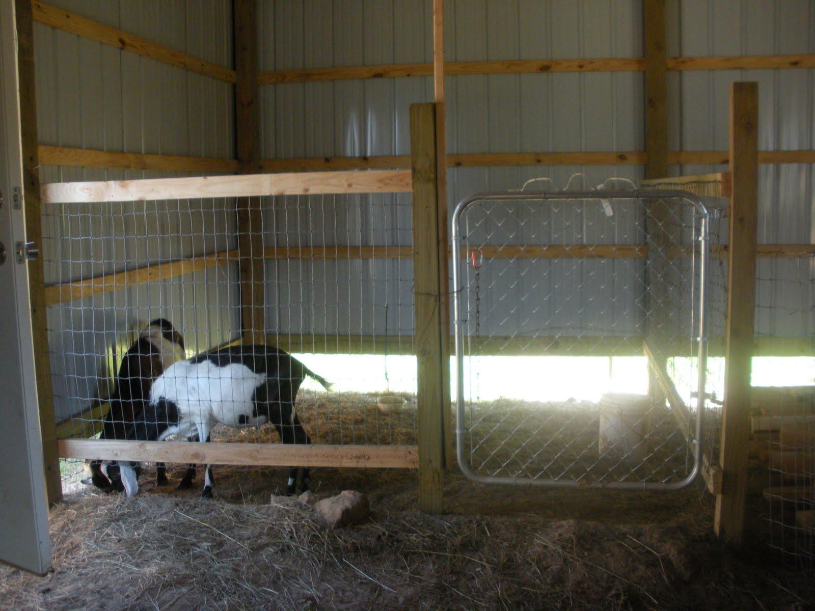 Goat Barns