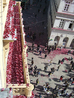 rote rosen am graben (onemorehandbag)