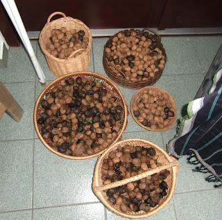 walnuts (onemorehandbag)
