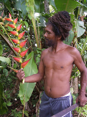 David with a Wild Plantain Flower