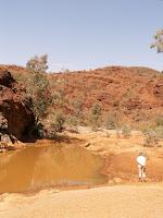 walking in Flinders