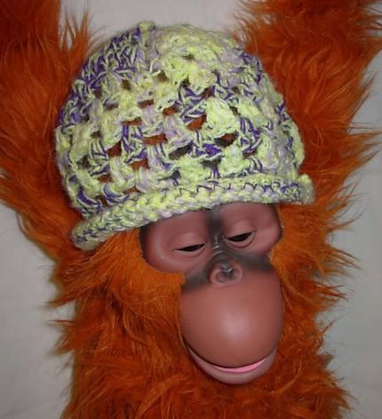 monkey+baby+win.jpg