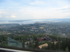 View of Oslo City from Hollmenkollen