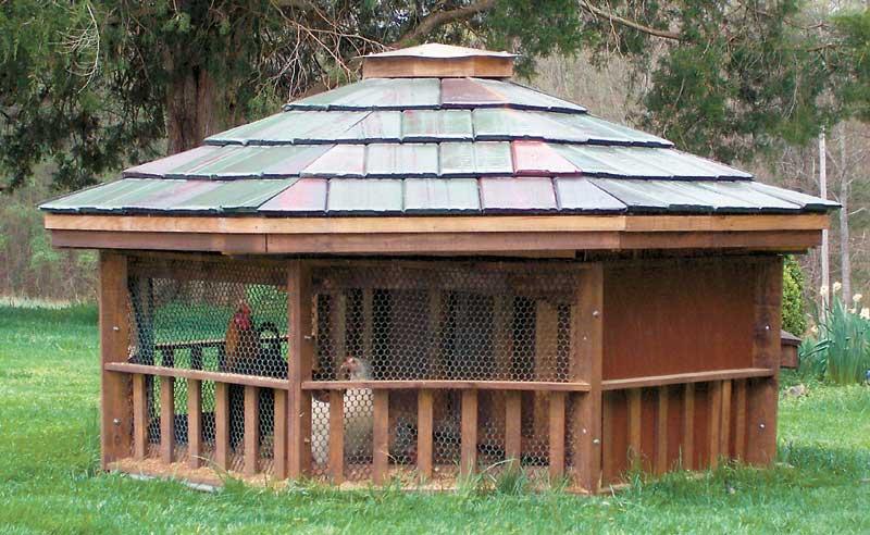 City kid farm a coop d 39 etat for Gazebo chicken coop