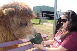 Megan Feeding a Camel