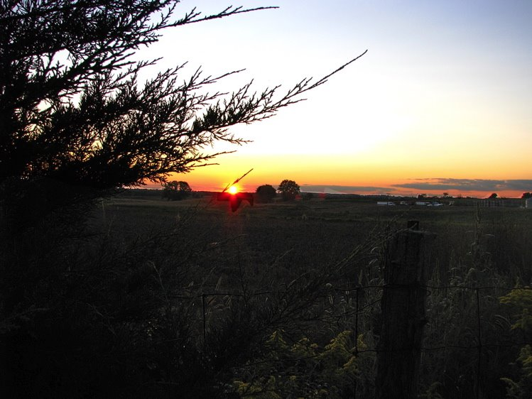 [Sunset+750+0ver+goldenrod]