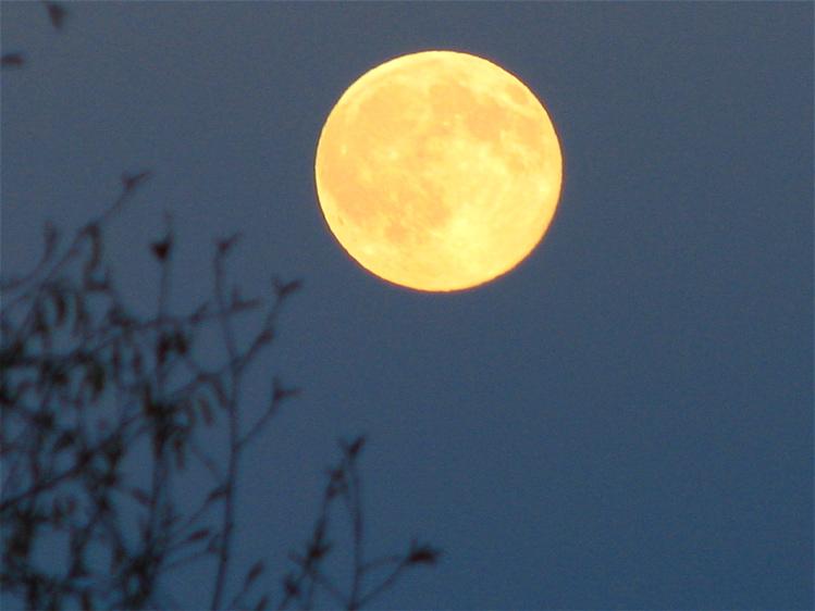 [full+moon+1]