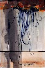 Medusa Anaranjada