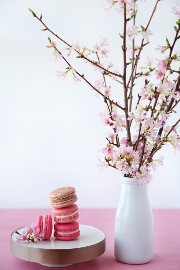 Cherry Blossom Macarons for Martha Stewart Weddings
