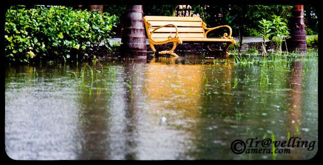 noida parks flooded with water after rains 2010 sector 26 monsoon effect in noida part 2. Black Bedroom Furniture Sets. Home Design Ideas