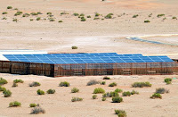 UAE Solar Energy Desalination Plant for Friendly Results