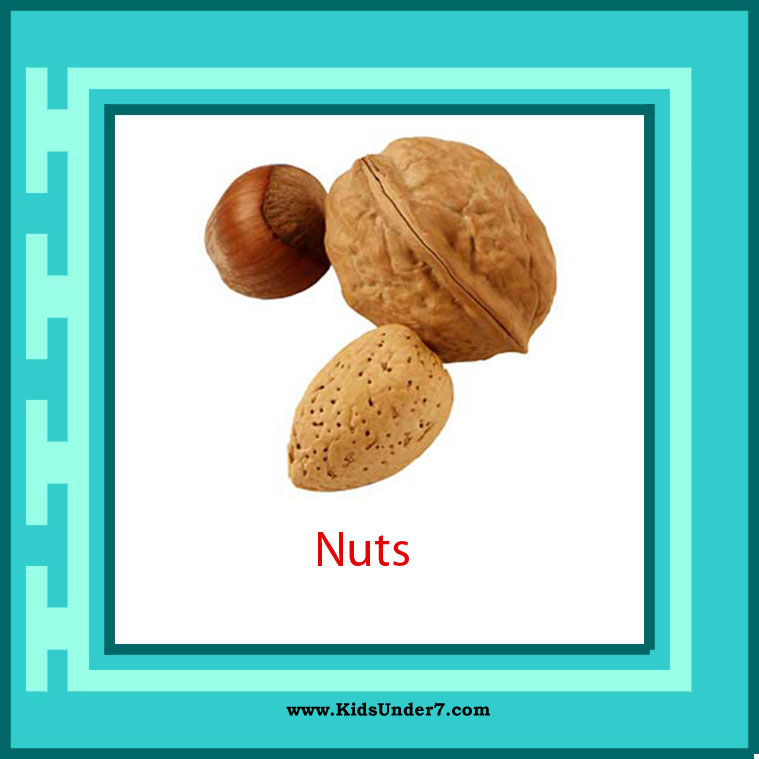 Can A Dog Eat Monkey Nuts