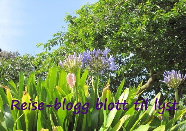 Reise-blogg blott til lyst