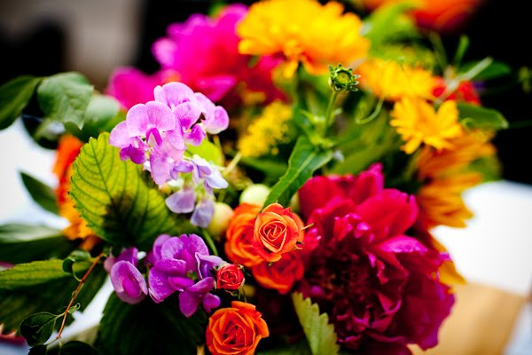 Bright flower pictures beautiful flowers for Bright pretty colors