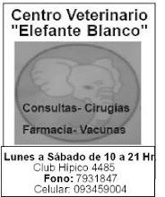 Veterinaria Elefante Blanco