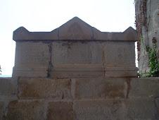 Tomba 1353