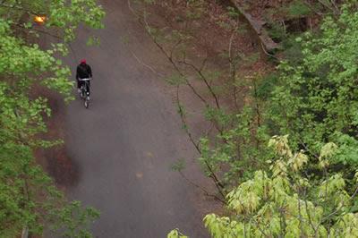 Bike rider, Forbidden Drive, Wissahickon Park.