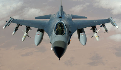 F-16 Fighting Falcon image 2