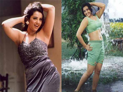 Meena Hot Pictures
