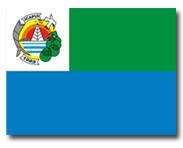 A Bandeira do Município