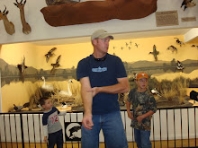 Awesome Wildlife museum, Kevin and the boys