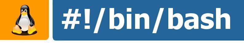 Bin Bash Blog
