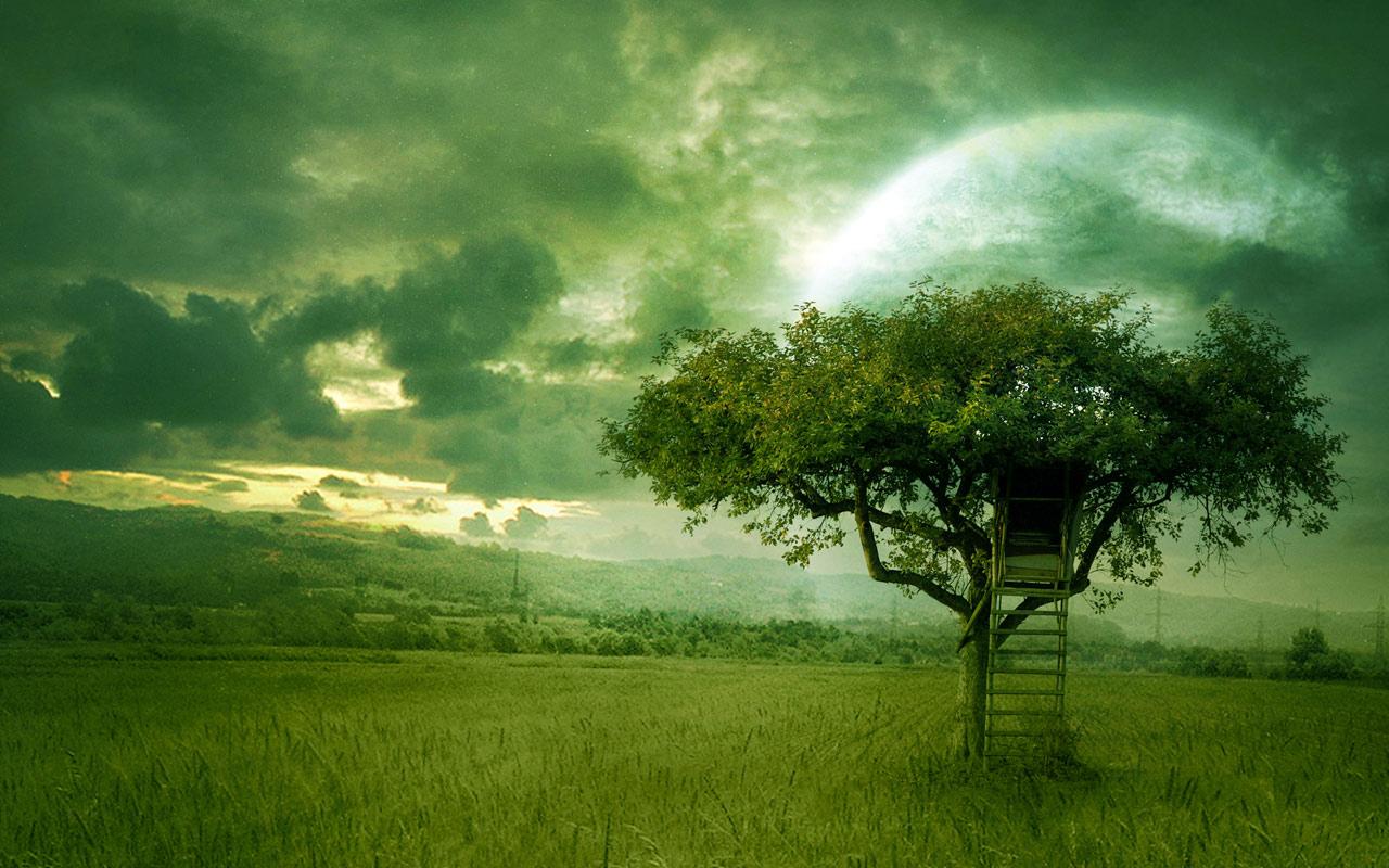 http://4.bp.blogspot.com/_Y3hlQe7qejk/TIORX27LraI/AAAAAAAAAcI/epUEB_uoKvQ/s1600/Golden_Dream_Wallpaper.jpg
