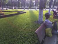 park, vietnam, saigon, ho chi minh city, peaceful, wild wild east dailies, david everitt-carlson, news, opinion