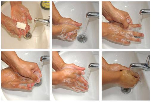 Le petit boul normas de higiene en el personal for Normas de higiene personal en la cocina